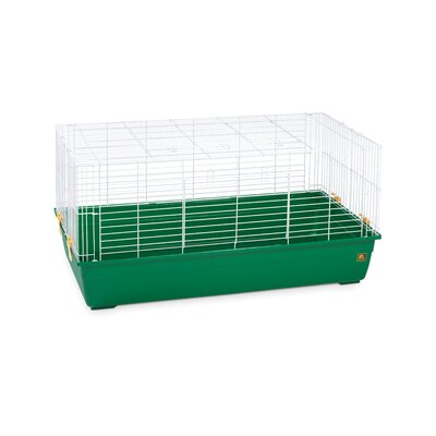 Deep Tub Small Animal Cage Color: Dark Green