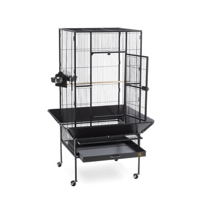 Park Plaza Large Bird Cage with Casters Color: Black Hammertone