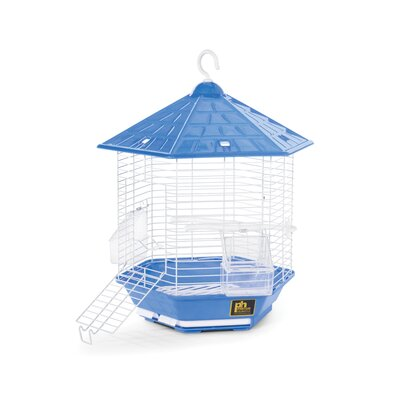 Bali Bird Cage Color: Blue