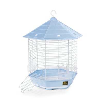 Copacabana Bird Cage Color: Light Blue