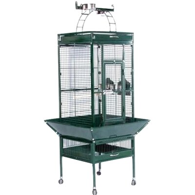 Signature Series Small Bird Cage Color: Jade Green