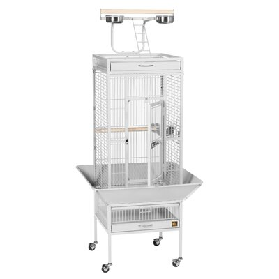 Signature Series Small Bird Cage Color: Pewter