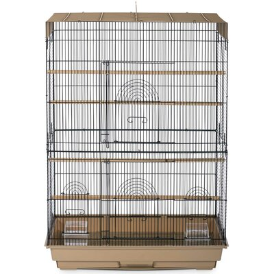 Prevue Pet Products Flight Cage Color: Brown / Black