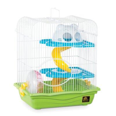 Hamster Haven Color: Green