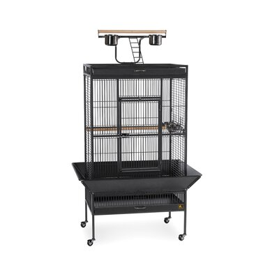 Signature Series Large Bird Cage Color: Black
