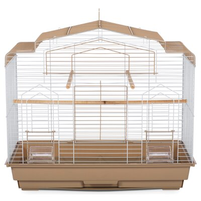 Barn Bird Cage with Food Access Door Color: Brown