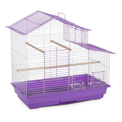 Bird Cage with Removable Tray Color: Purple