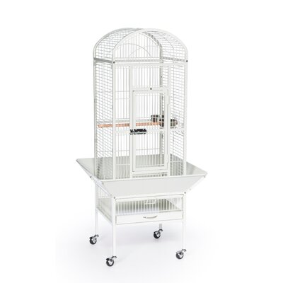 Small Dometop Bird Cage Color: Chalk White