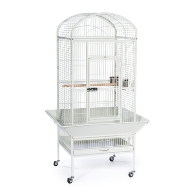 Medium Dome Top Bird Cage with Casters Color: Chalk White