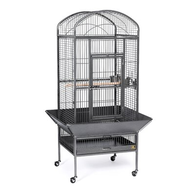 Medium Dome Top Bird Cage with Casters Color: Black Hammertone