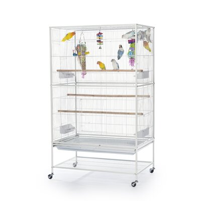 Flight Bird Cage with Storage Shelf Color: Chalk White