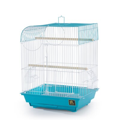 Pet Products Southbeach Flat Top Bird Cage Color: Teal