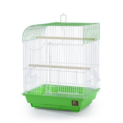 Pet Products Southbeach Flat Top Bird Cage Color: Lime Green