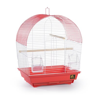 Southbeach Dome-Top Bird Cage Color: Coral