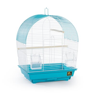 Southbeach Dome-Top Bird Cage Color: Teal