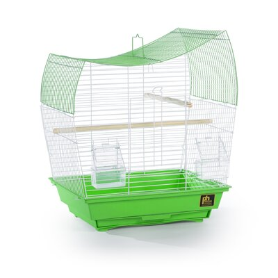Pet Products Southbeach Wave Top Bird Cage Color: Lime Green