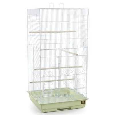 Tiel Bird Cage with Handle Color: Sage Green