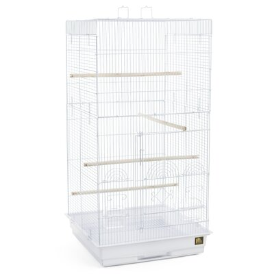 Tiel Bird Cage with Handle Color: White