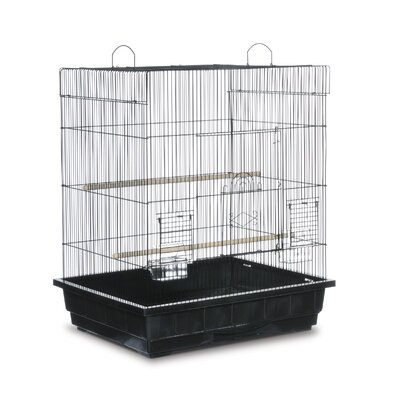 Square Top Parakeet  Bird Cage Color: Black