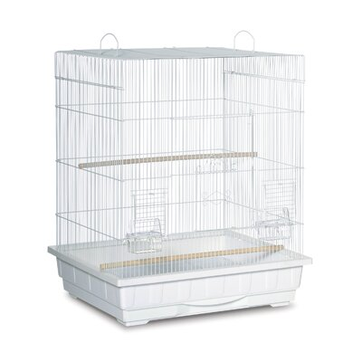 Square Top Parakeet  Bird Cage Color: White