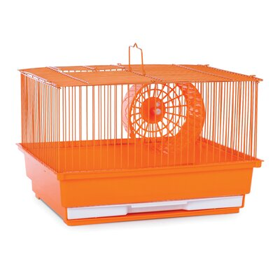 Small Animal Cage Color: Orange