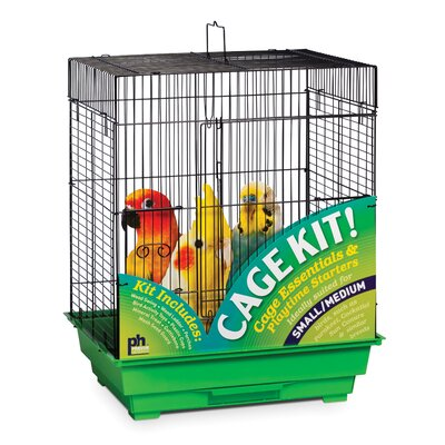 Medium Square Roof Bird Starter Kit Color: Black and Green