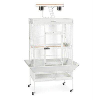 Signature Series Large Bird Cage Color: Chalk White