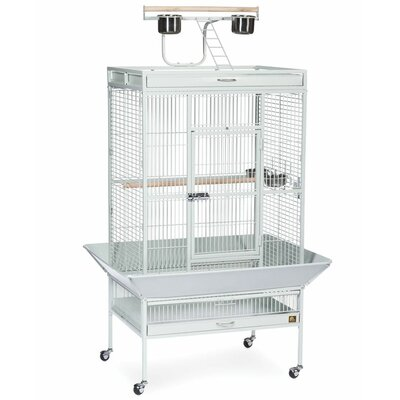 Signature Series Large Bird Cage Color: Pewter