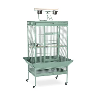 Signature Series Large Bird Cage Color: Sage Green