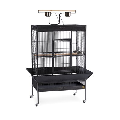 Signature Series X-Large Bird Cage Color: Black