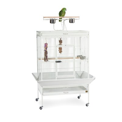 Signature Series X-Large Bird Cage Color: Chalk White