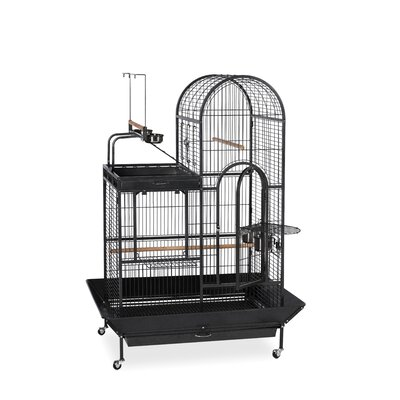 Deluxe Parrot Bird Cage with Play Top 3159