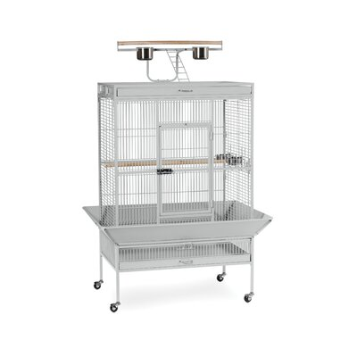 Signature Series X-Large Bird Cage Color: Pewter