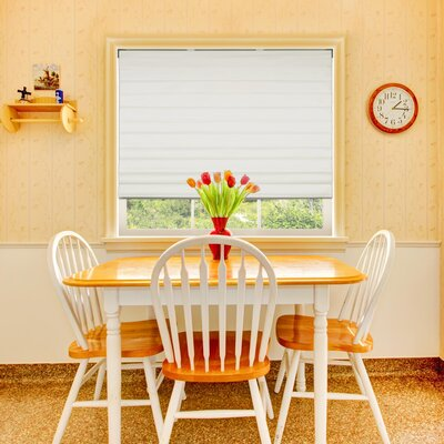 Blackout Roman Shade Blind Size: 36 W x 60 L, Finish/Finish: Ivory