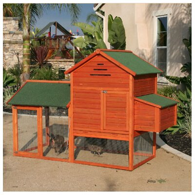Raised Wooden Coop
