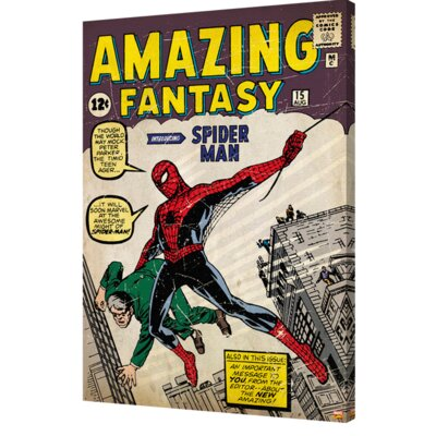 'Spider-Man - Amazing Fantasy #15' Graphic Art on Wrapped Canvas CVA00155