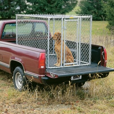 Bethany Steel Chain Link Portable Yard Kennel Size: (48 H x 48 W x 72 L)