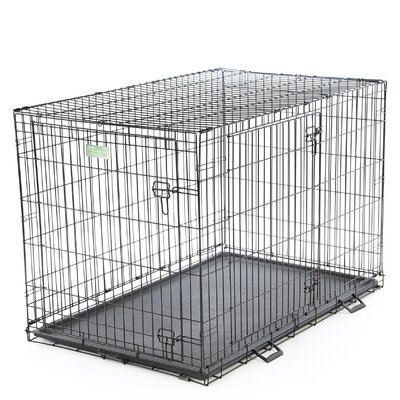 iCrate Double Door Pet Crate Size: X Large (33 H x 30 W x 48 L)