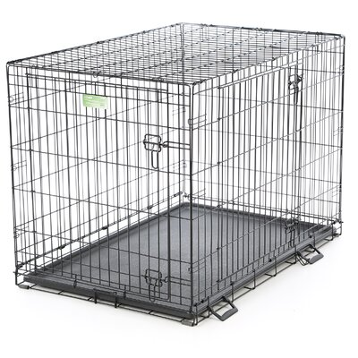 iCrate Double Door Pet Crate Size: Large (30 H x 28 W x 42 L)