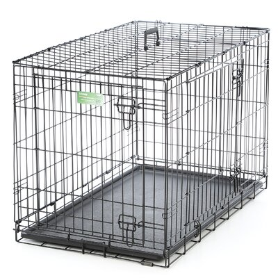 iCrate Double Door Pet Crate Size: Intermediate (25 H x 23 W x 36 L)
