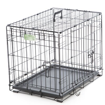 iCrate Double Door Pet Crate Size: Small (19 H x 18 W x 24 L)