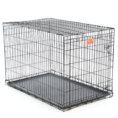 Life Stages Fold & Carry Single Door Pet Crate Size: X-Large (33 H x 30 W x 48 L)