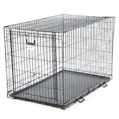 Ovation Single Door Pet Crate Size: 42 (30.5 H x 29 W x 43 L)