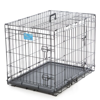 Life Stages Fold & Carry Double Door Pet Crate Size: Medium (24 H x 30 W x 21 D)