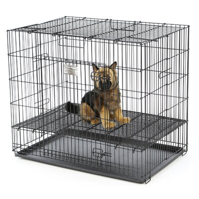 Beryl Puppy Playpen Plastic Pan Yard Kennel Floor Grid: 1/2 Floor Grid, Size: Large (30 H x 48 W x 48 L)