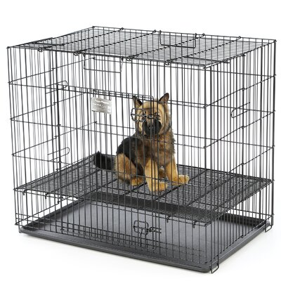 Puppy Playpen Plastic Pan Yard Kennel Size: Small (30 H x 36 W x 24 L), Floor Grid: 1/2 Floor Grid