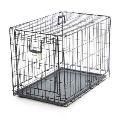 Ovation Single Door Pet Crate Size: 30 (23.75 H x 21.75 W x 31 L)