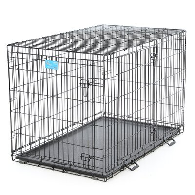 Life Stages Fold & Carry Double Door Pet Crate Size: X-Large (33 H x 48 W x 30D)