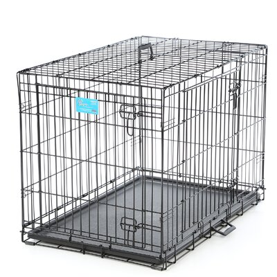 Life Stages Fold & Carry Double Door Pet Crate Size: Intermediate (27 H x 36 W x 23 D)