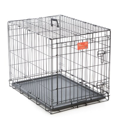 Camila Life Stages Fold & Carry Single Door Pet Crate Size: Medium (24 H x 21 W x 30L)